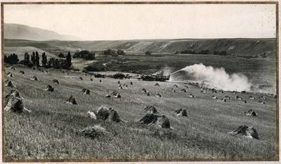 Threshing wheat on 'The Block' circa 1928