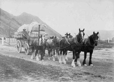 Tom Cairns with load of wool at Kurow Railway Station