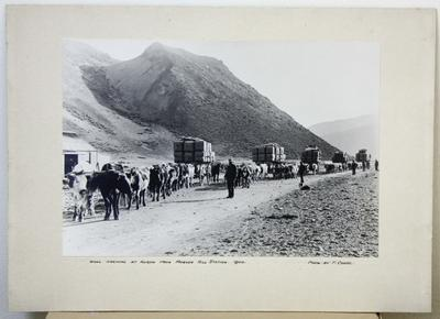 Ure family arriving at Kurow with wool from Morven Hills Station