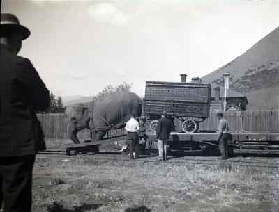 Wirth Bros. Ltd. Circus and Zoo at Kurow