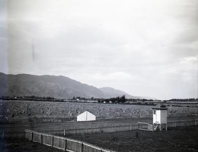 Kurow Race Course