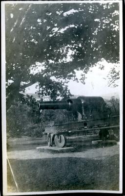 Dunedin Botanic Gardens cannon; 2018/058.059