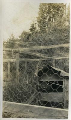 Chicken coop [?]; 2018/058.133
