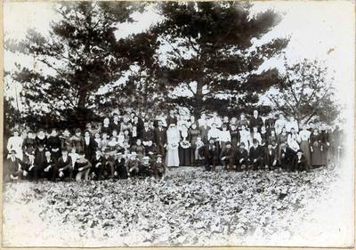 Wedding scene - large gathering of people standing outside in front of trees.