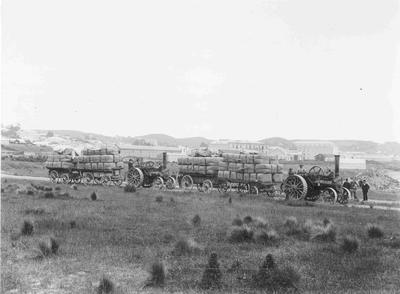 Traction Engines towing wool bales, Waterfront Road, Oamaru Harbour c.1890s.