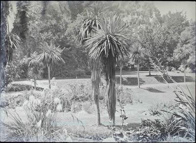 Oamaru Public Gardens c.1910.
