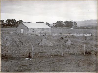 Shearing Shed, Bushey Park