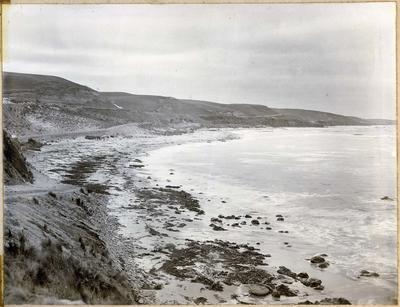 Shag Point Bay