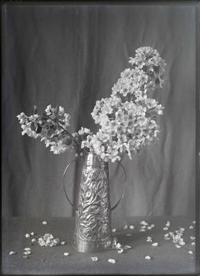 Unidentified cut flower arrangement