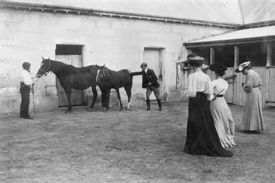 People and horses at stables. Elderslie Estate