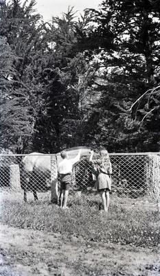 Girl and boy with horse. Elderslie Estate
