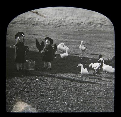 Girls with geese, ducks and chickens. Elderslie Estate