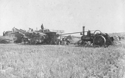 Clark's threshing mill, (Totara?)