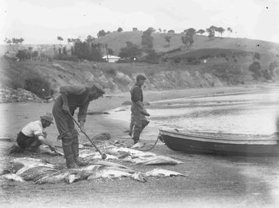 Fishermen at Moeraki, North Otago