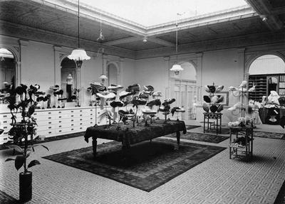 Millinery Department. John Bulleid & Co.