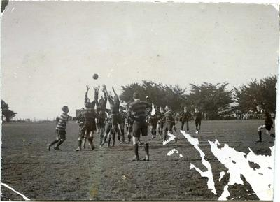 Waitaki Boys' High School rugby