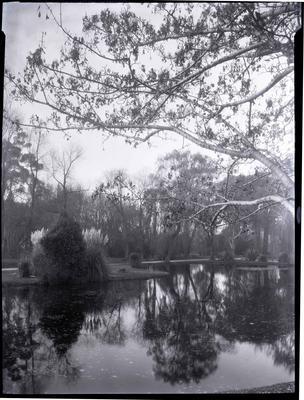 Mirror Lake, Oamaru Public Gardens