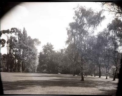 Dais Lawn, Oamaru Public Gardens