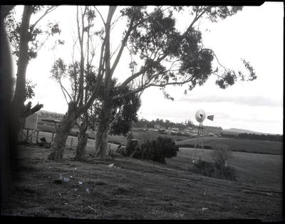 Rural scene, unidentified