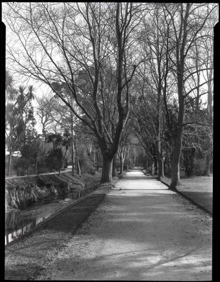 Oamaru Public Gardens.