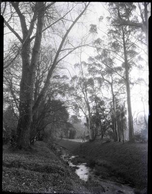 Oamaru Creek, Oamaru Public Gardens