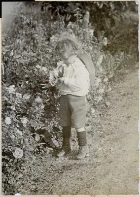 Boy in a garden; 2014/45.02.118