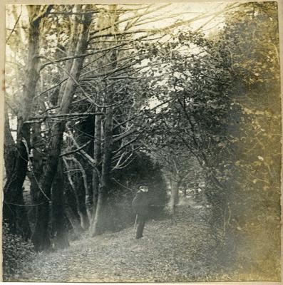 Man standing on a path through trees; 2014/45.02.160