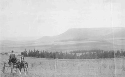 Forrester, Thomas. The Gorge, Weston