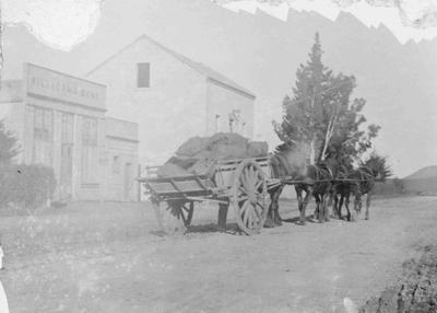 Horse and Cart in front of Milligan and Bonds premises, Ngapara