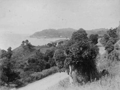 Moeraki, access road