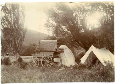 Camping North Otago, Ngapara; 3651P