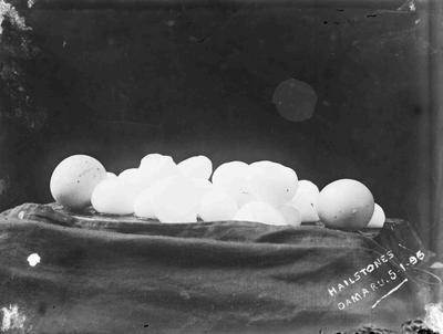 Hailstones in Oamaru 5 Janaury 1895, From storm of 1895.