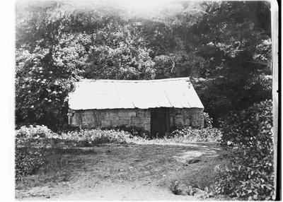 W H Dansey's hut, Otekaike