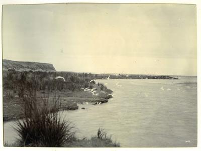 Coastline unidentified; P0027.12.11