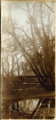 Bridge over creek, location unidentified; 2014/45.01.057