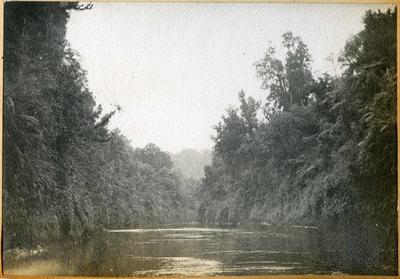 River scene, location unidentified; 2014/45.01.072