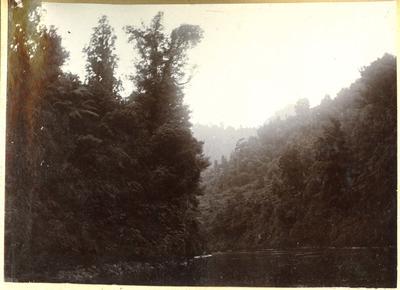 River scene, location unidentified; 2014/45.01.142
