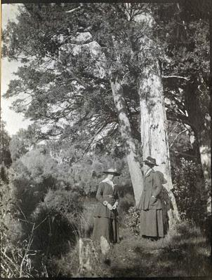 Two women in the bush; 2014/45.01.145