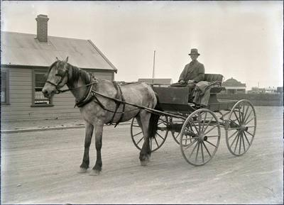 Unidentified man with Horse and Buggy