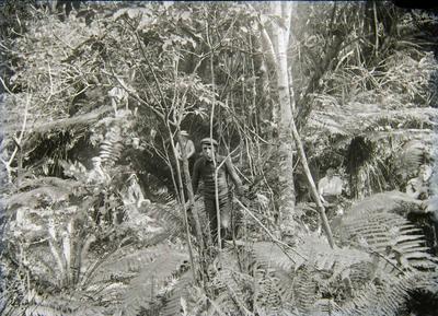 Unidentified men in bush