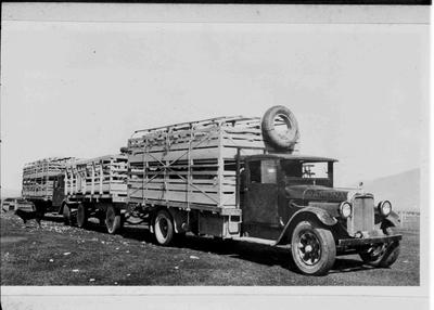 "Maheno Transport sheep truck ""Ramona"""