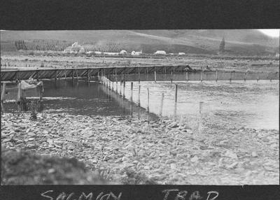 Salmon Hatchery Hakataramea, North Otago