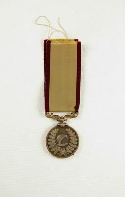 New Zealand Territorial Service Medal