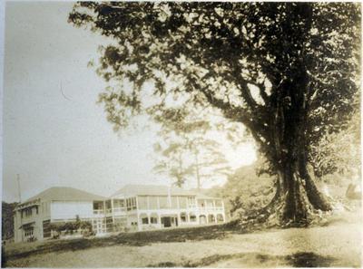 Unidentified building, Fiji; Macfie, Robert; 2014/43.2.106