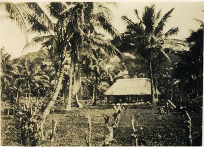 Bure, Fiji; 2014/43.2.125