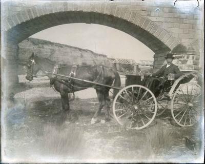 Man with horse and cart under Waianakarua Bridge