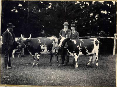 William Cowan with Princess Victoria and Ada II of Haydowns