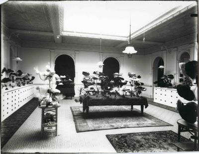 Millinery Department, John Bulleid and Company Limited.