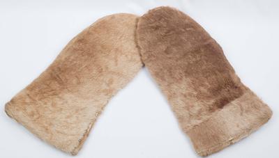 Sir Ernest Shackleton's Gloves