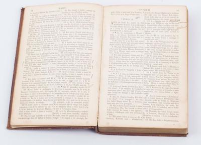 Holy Bible (Maori)